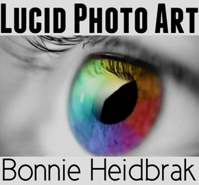 LUCID Photo Art