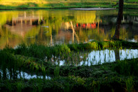 Rice Pond at Sunset